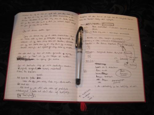 skriv dagbog