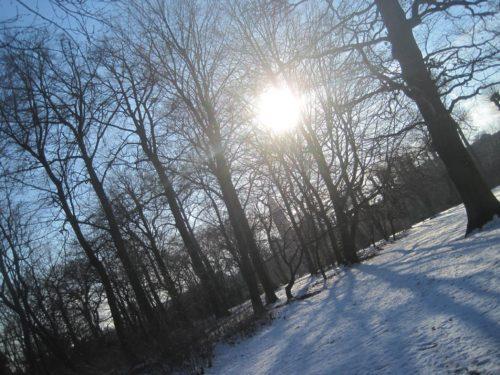 Sol på sne